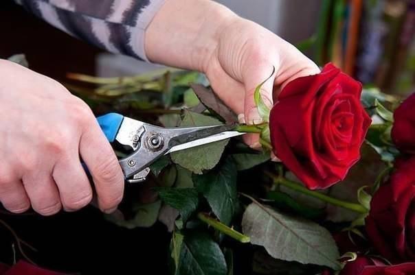 Букет из роз и клубники 2