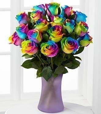 Радужные разноцветные розы