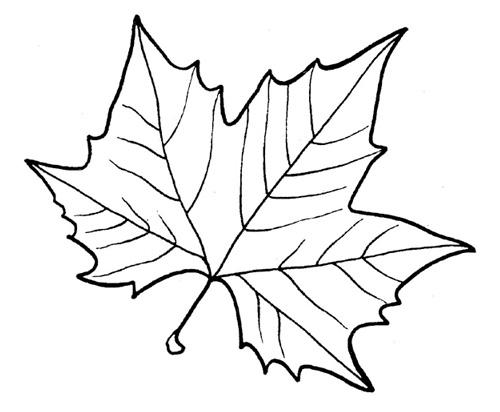 Листья кленовые своими руками