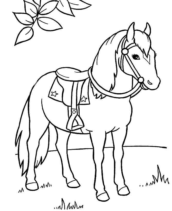 Картинки лошадей черно белые