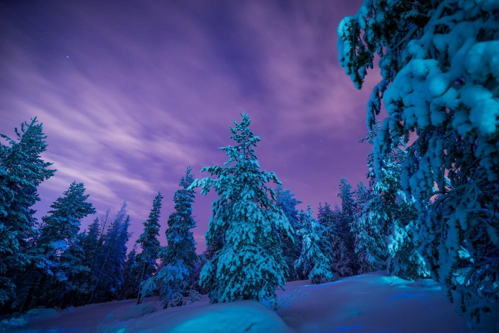 Зимние звуки скачать бесплатно